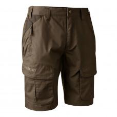 Reims Shorts - Dark Elm