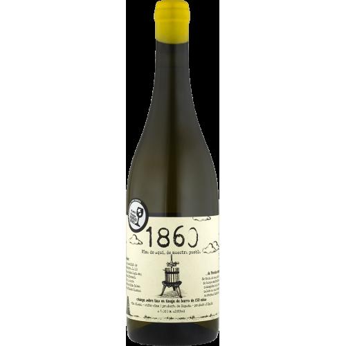 """Bodegas Cano """"1860 Coleccíon"""" Sauvignon Blanc Amfora - Sobre Lias 2019 Almansa DO"""